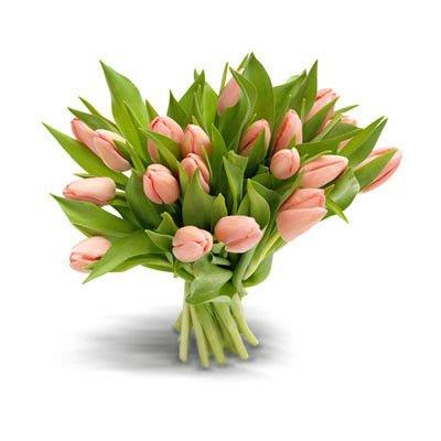 Bukiet 21 Tulipanów Różowych